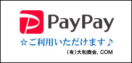 PayPay 使えます♪